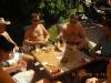 2010-06-18_malle_062