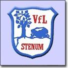 VfL Stenum AH