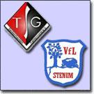 tsg-seckenhausen-vfl-stenum